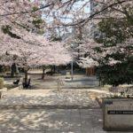 中央区立桜川公園