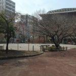 【湊】鉄砲洲児童公園(てっぽうずじどうこうえん)